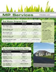 MP Services (flyer back)